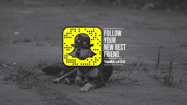 ¿Usar Snapchat en tu campaña?