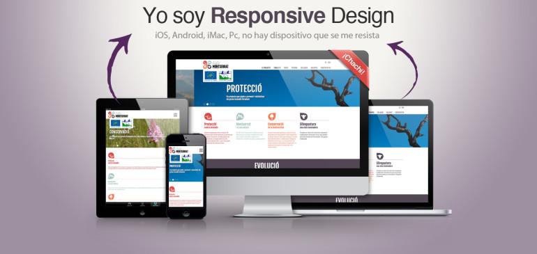Importancia de Tener un Sitio Web Responsive